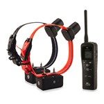 DT Systems SPT-2432 Dt 2-dog 1.3 M Remote Trainer With Beep 15556-5